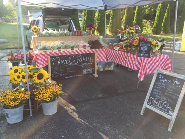 Novel Farm at Farmers Market